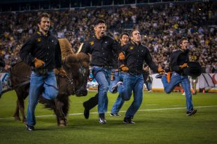 Ralphie and her handlers rush toward the end zone during the halftime of the Buffs' 44-7 win over the CSU Rams during the Rocky Mountain Showdown at Mile High on September 2, 2016. (Robert Hylton/CU Independent)