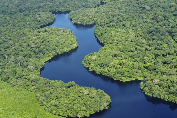 Aerial view of the Amazon Rainforest, near Manaus, the capital of the Brazilian state of Amazonas. (Photo courtesy of Neil Palmer (CIAT)/Wikimedia Commons)